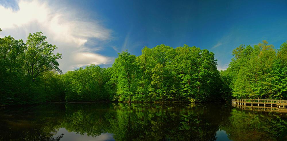 Lindenwood Nature Preserve