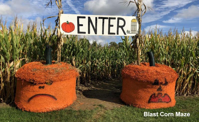 Blast. Corn Maze