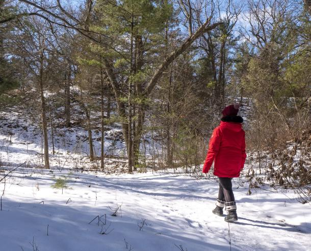 Winter Pinery with woman on trail