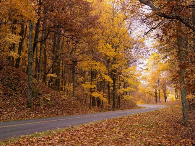 Fall Foliage Blue Ridge Parkway