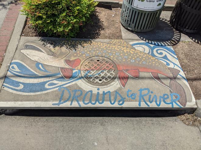 Roanoke, VA - Stormwater Art Project