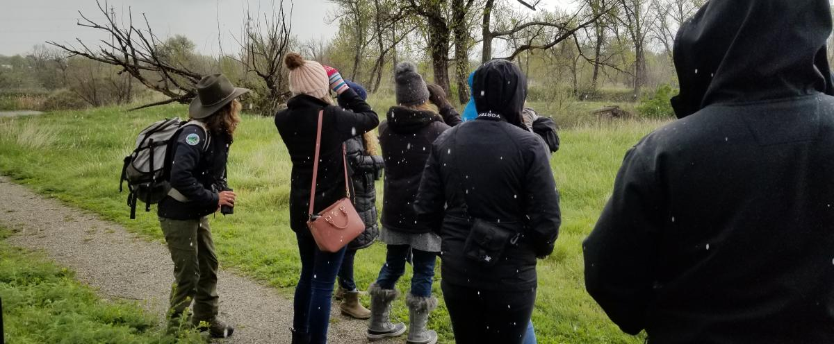 Group looking through binoculars for birds at Sawhill Ponds