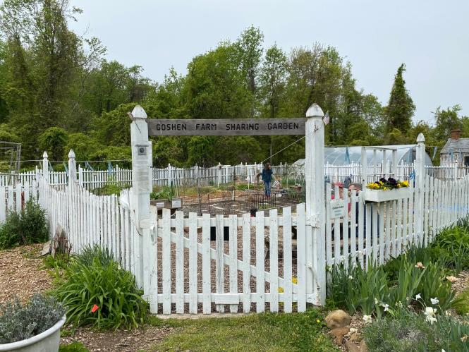 The sharing garden at Goshen Farm with picket fence