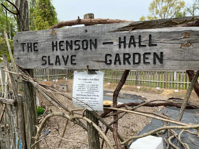 Former slave garden at Goshen farm.