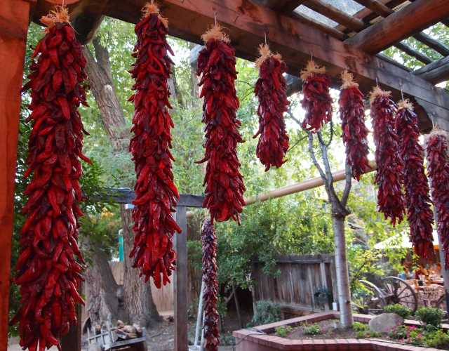 d82a39957570 Ristras - New Mexican Red Chiles