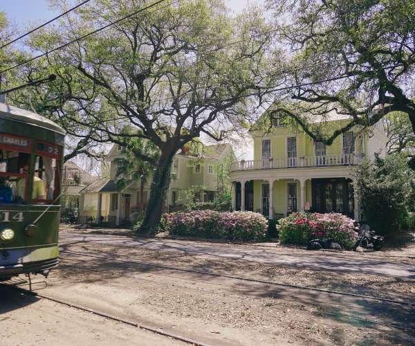 Tranvía - Uptown Spring Color - Azaleas - St. Charles Avenue