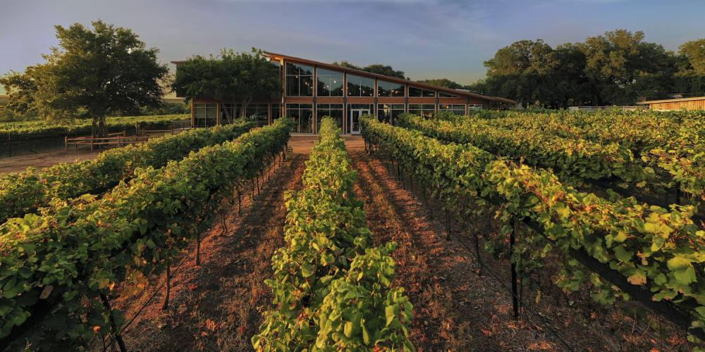 Photo of the tasting room building at William Chris Vineyards behind rows of grapevines