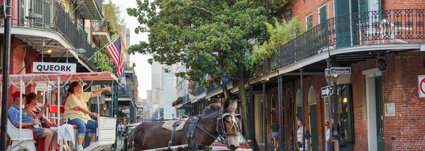 French Quarter Mule and Buggy