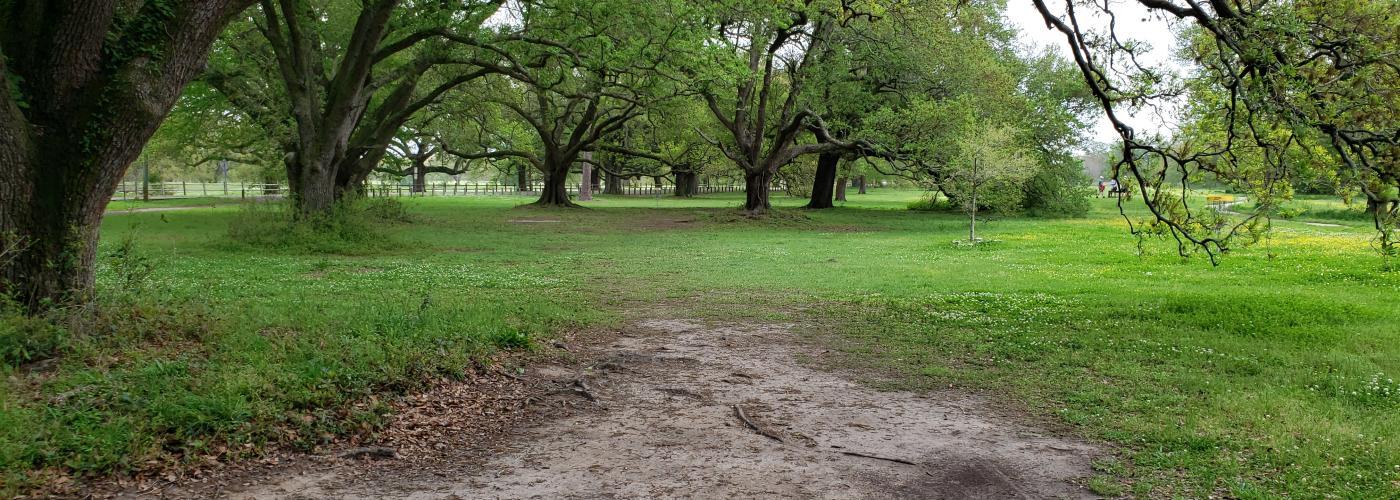 City Park Disc Golf Course - Hole 2 Teepad