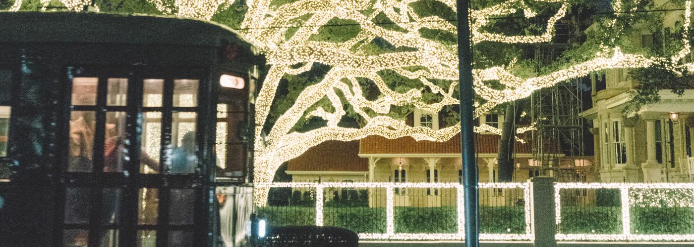 Christmas Lights on St. Charles Avenue
