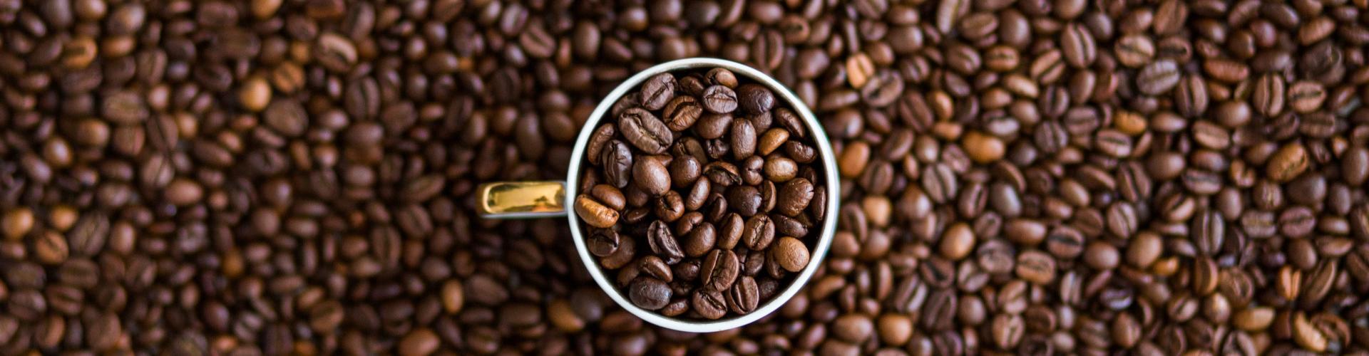 Sunset Stock Coffee Beans