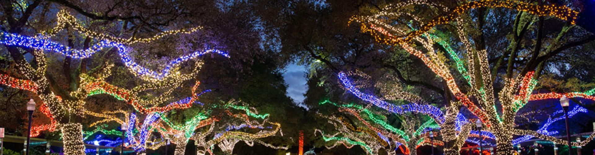 7 'Must See' Holiday Events