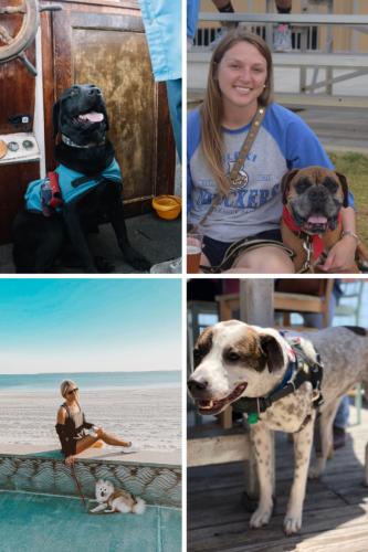 Pet-Friendly Getaway Collage