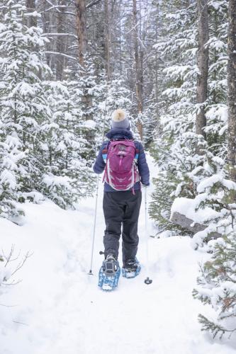 Woman walking away up snowshoe trail, trekking Wyoming's Snowy Range