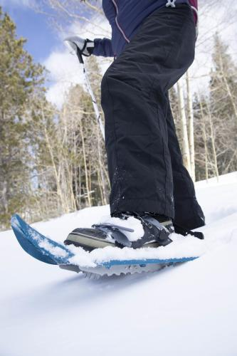 Close-up of snowshoe covered in snow in Wyoming
