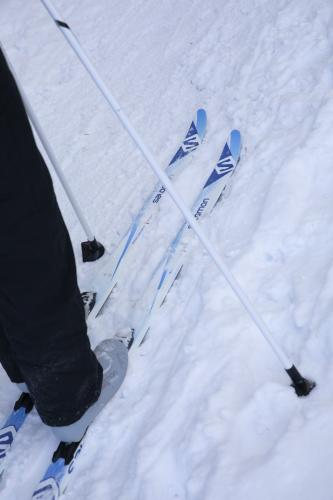 cross-country skis winter close-up