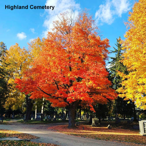 Highland Cemetery in the Fall