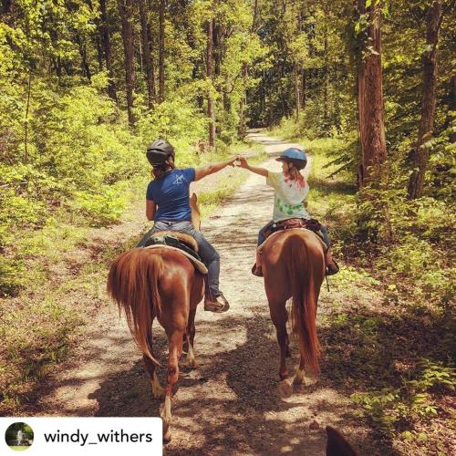 Deam Lake Horses windy_withers