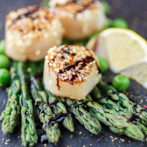 Seasoned scallops on a bed of asparagus