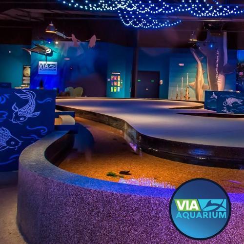 Via Aquarium Wedding