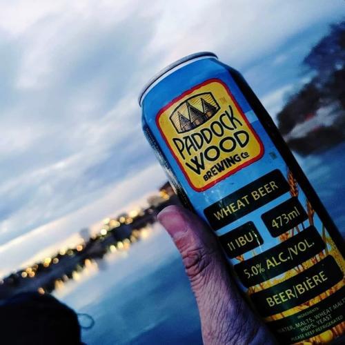 Paddock Wood beer