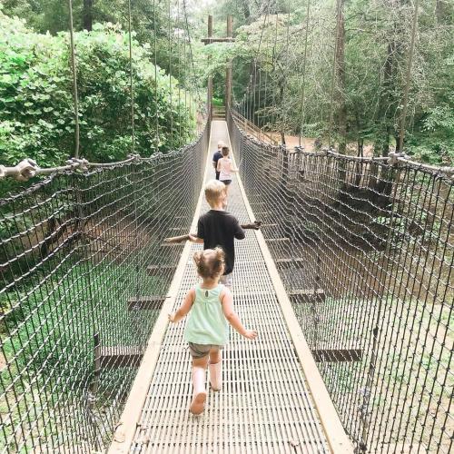 Anne Springs Swinging Bridge