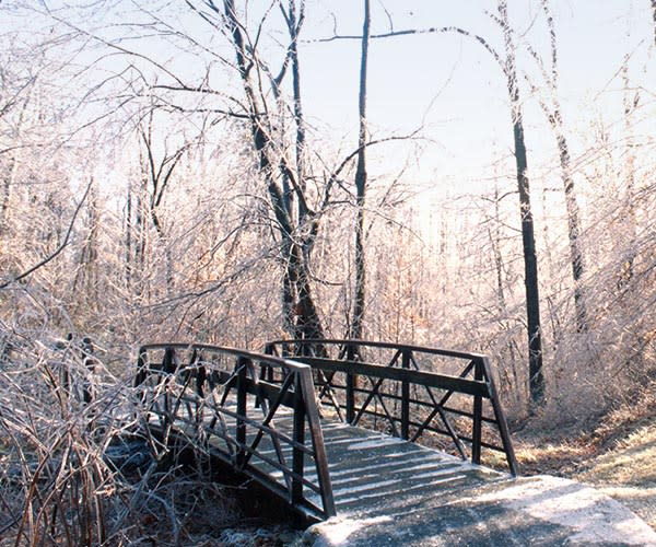 Hiking Trails winter