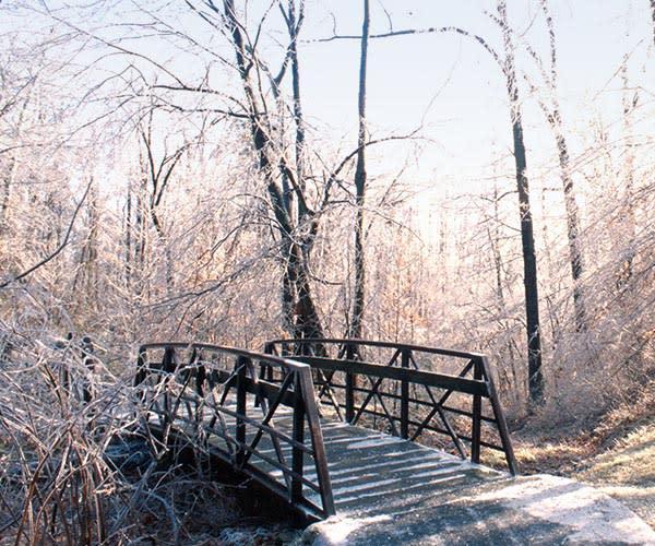 Hiking Trails winter