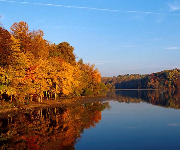 autumn in fairfax county