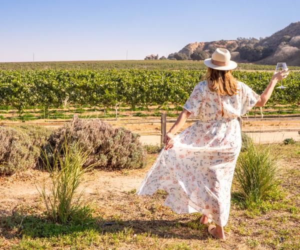 Salinas Valley Vineyard River Road Wine Trail