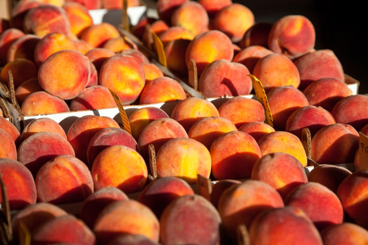 Gillespie County is one of the largest peach producing counties in Texas.