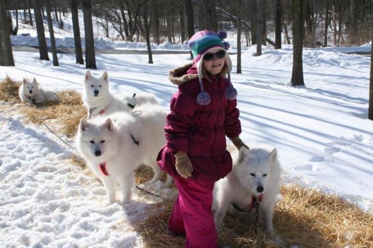 Harris Nature Center Winter