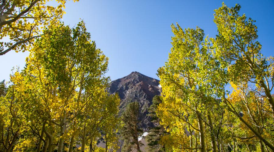 virginia lakes fall colors