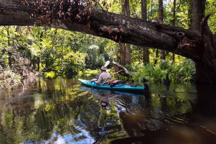 Canoeing / Kayaking / Paddleboarding