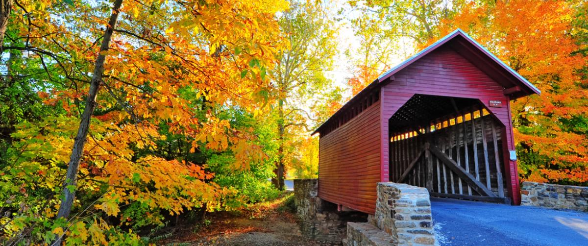 Roddy Road Covered Bridge with the trees changing colors