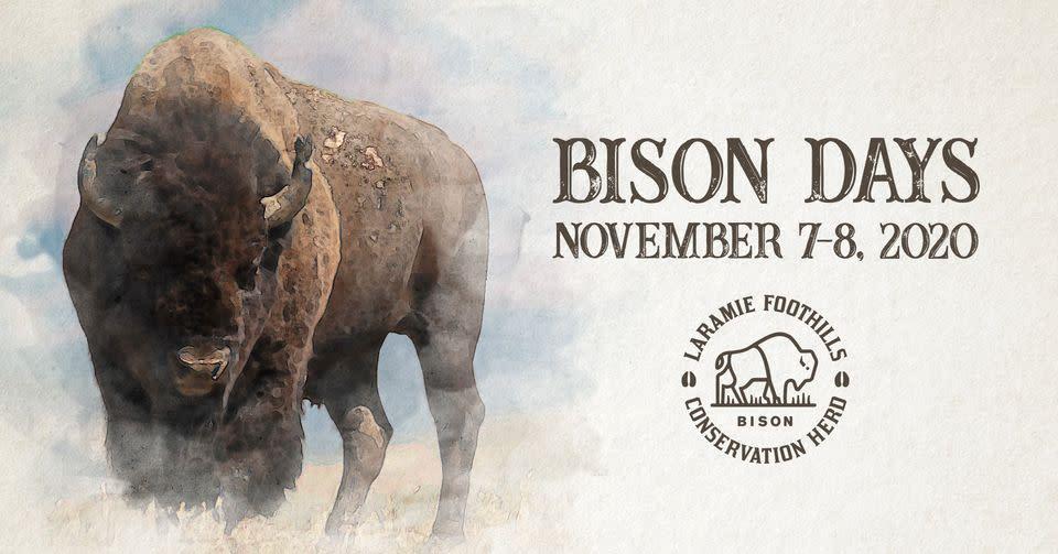 Bison Days 2020