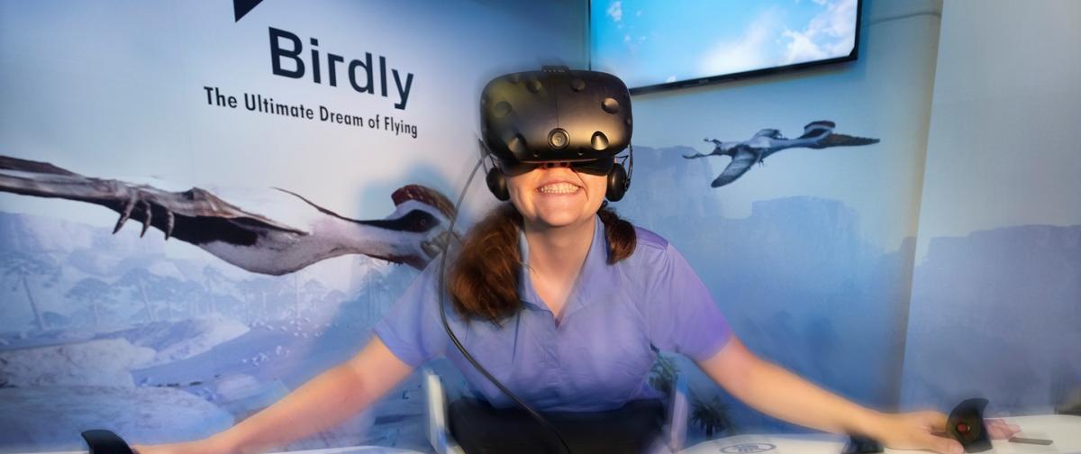 Birdly VR Experience