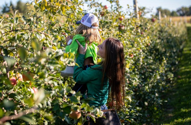 Woman and girl apple picking at Wickham Farms