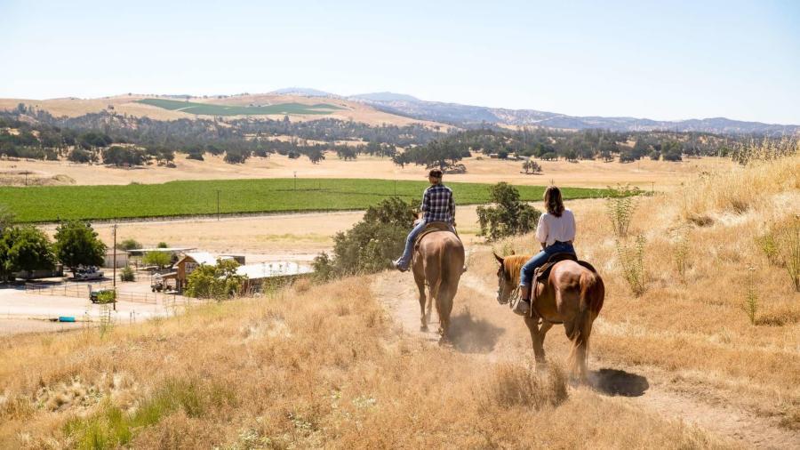Horseback Riding in Paso Robles, CA