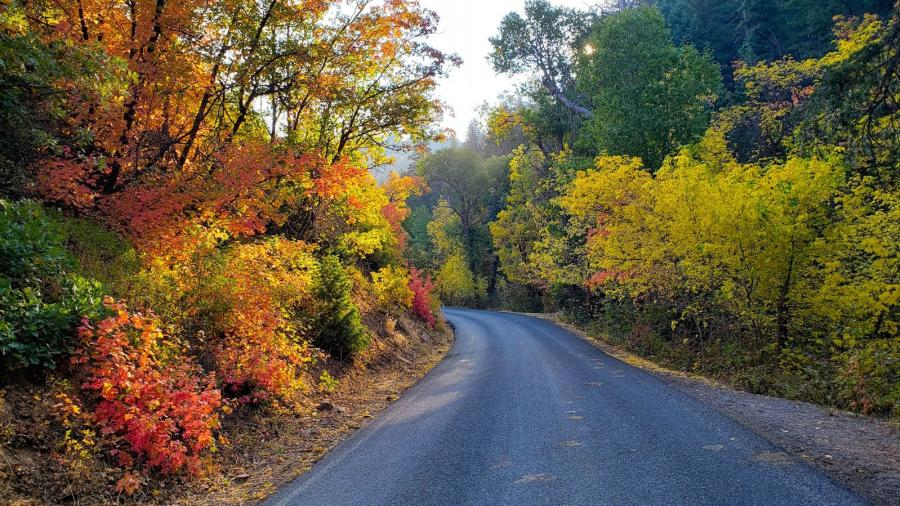 Hobble Creek Canyon's Right Fork