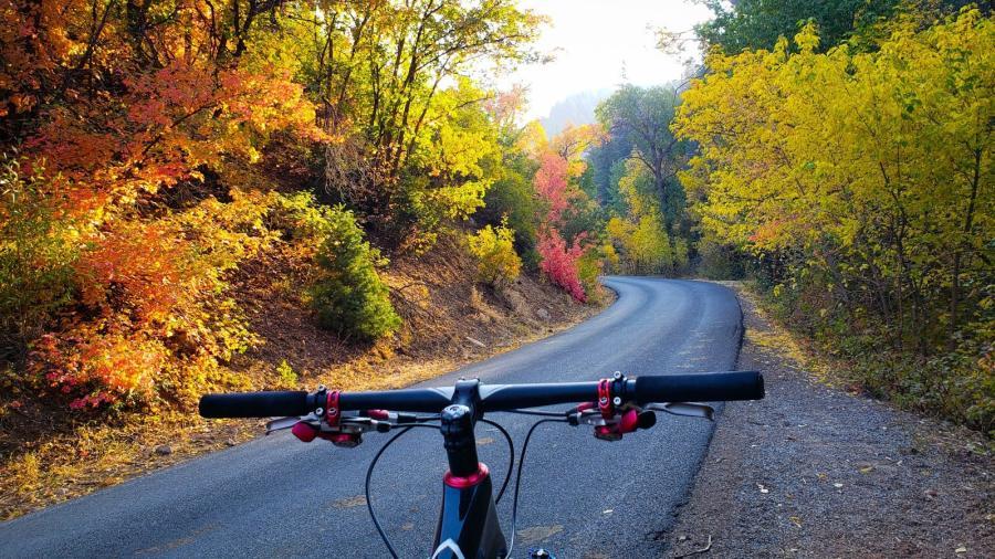 Hobble Creek Canyon South Fork Canyon Bike