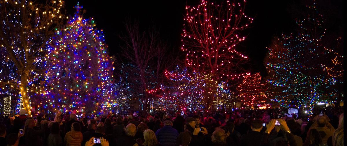 Annual Holiday Lighting Plaza