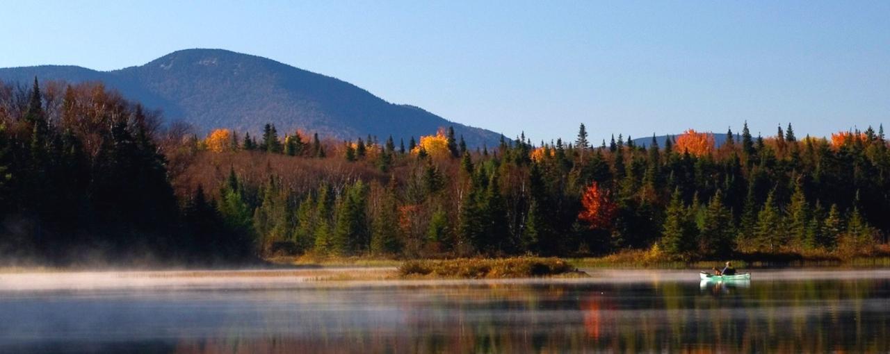 Canoeing in Cedar River Flow area of Adirondack Park