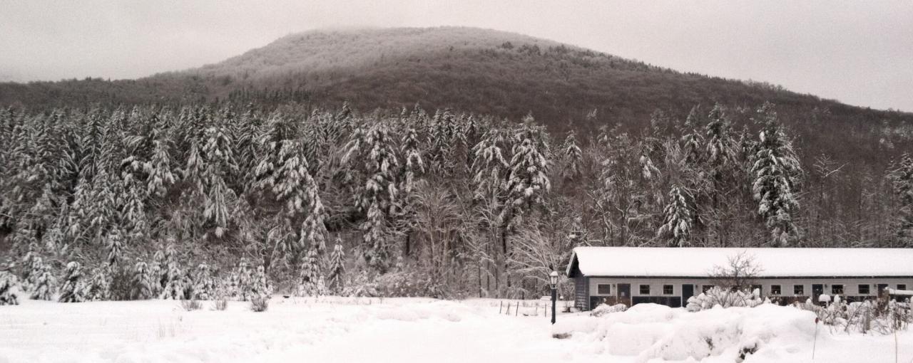 Spruceton Inn in snow - Photo by Casey Scieszka