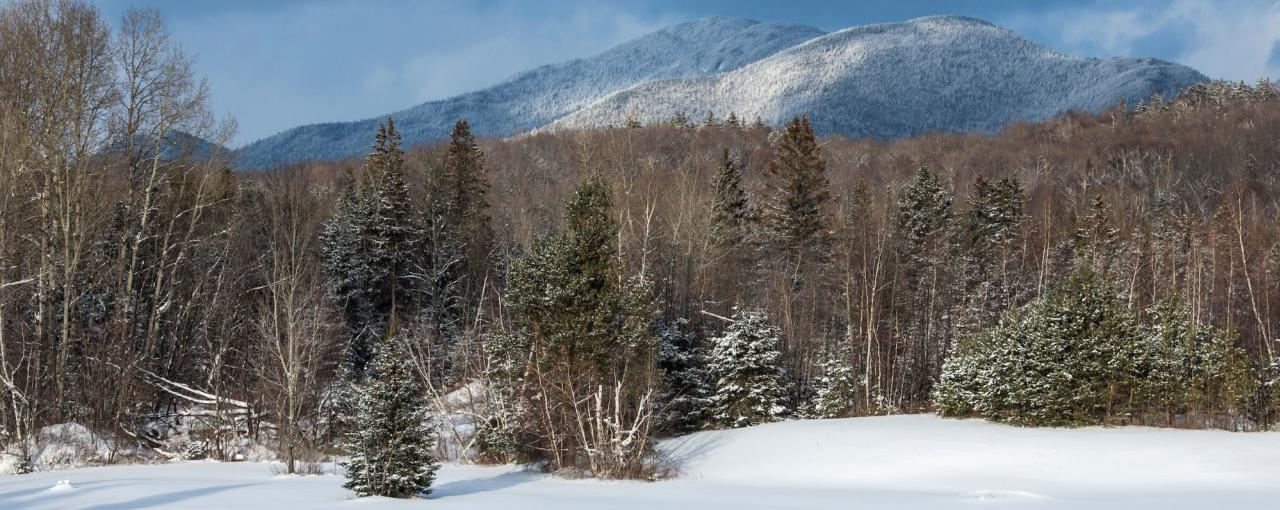 Slide Mountain in the Sentinel Range Wilderness Area (Adirondacks)
