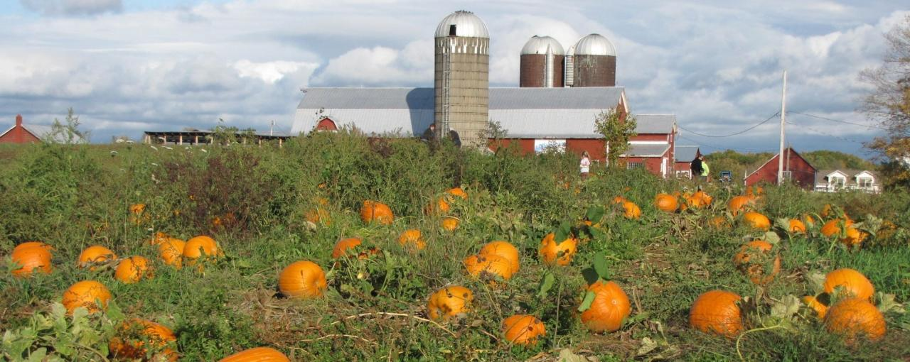 Ellms Family Farm -Courtesy of Susan Meyer