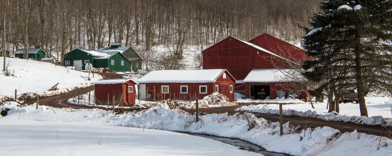 Catskill Mountain Maple, Maple Weekend