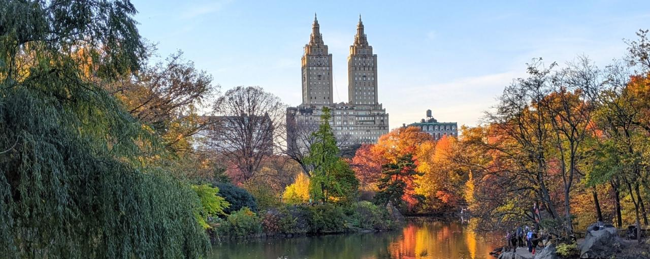 A view of fall foliage and buildings from within Central Park