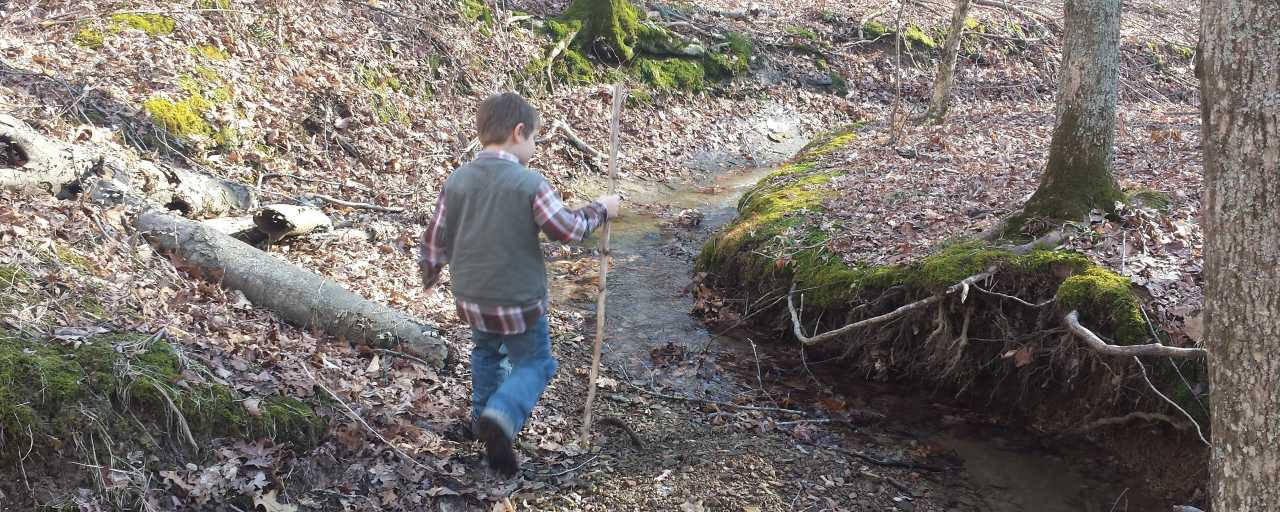 Hiking in Morgan-Monroe State Forest