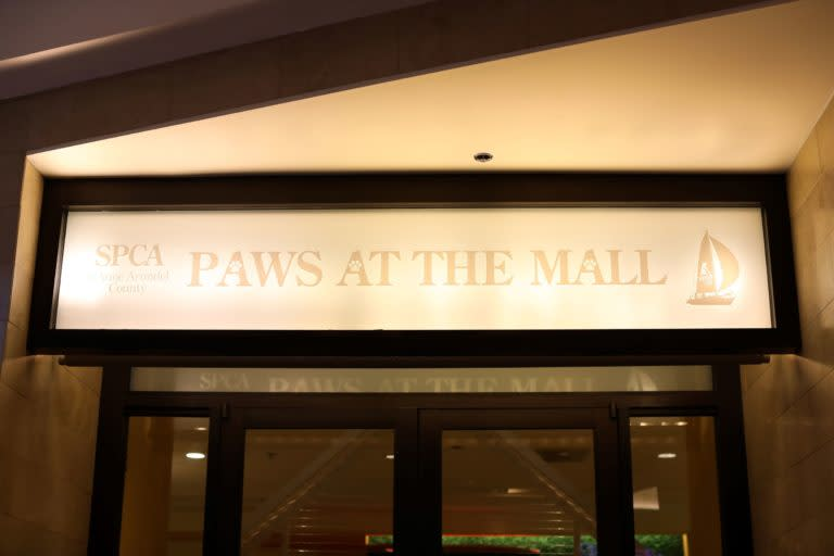 Paws-at-the-Mall-Sign